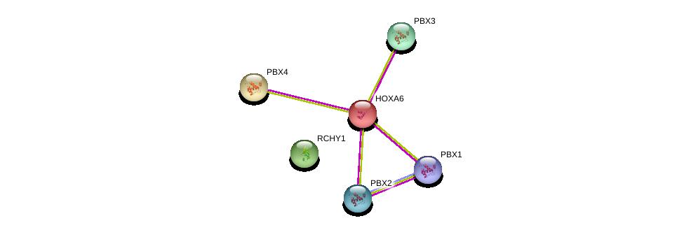 http://string-db.org/version_10/api/image/networkList?limit=0&targetmode=proteins&caller_identity=gene_cards&network_flavor=evidence&identifiers=9606.ENSP00000222728%0d%0a9606.ENSP00000405890%0d%0a9606.ENSP00000362588%0d%0a9606.ENSP00000251203%0d%0a9606.ENSP00000364190%0d%0a9606.ENSP00000321239%0d%0a