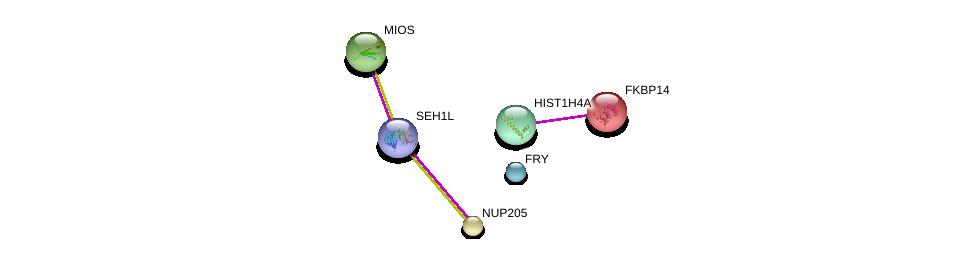 http://string-db.org/version_10/api/image/networkList?limit=0&targetmode=proteins&caller_identity=gene_cards&network_flavor=evidence&identifiers=9606.ENSP00000222803%0d%0a9606.ENSP00000352980%0d%0a9606.ENSP00000382779%0d%0a9606.ENSP00000285968%0d%0a9606.ENSP00000339881%0d%0a9606.ENSP00000369600%0d%0a