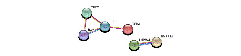 http://string-db.org/version_10/api/image/networkList?limit=0&targetmode=proteins&caller_identity=gene_cards&network_flavor=evidence&identifiers=9606.ENSP00000223051%0d%0a9606.ENSP00000452780%0d%0a9606.ENSP00000353224%0d%0a9606.ENSP00000224764%0d%0a9606.ENSP00000264568%0d%0a9606.ENSP00000417404%0d%0a