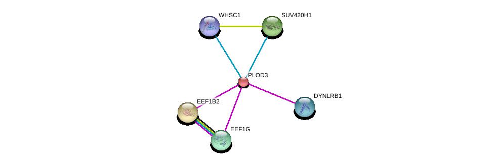 http://string-db.org/version_10/api/image/networkList?limit=0&targetmode=proteins&caller_identity=gene_cards&network_flavor=evidence&identifiers=9606.ENSP00000223127%0d%0a9606.ENSP00000236957%0d%0a9606.ENSP00000349679%0d%0a9606.ENSP00000331901%0d%0a9606.ENSP00000305899%0d%0a9606.ENSP00000372347%0d%0a