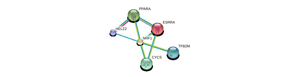 http://string-db.org/version_10/api/image/networkList?limit=0&targetmode=proteins&caller_identity=gene_cards&network_flavor=evidence&identifiers=9606.ENSP00000223190%0d%0a9606.ENSP00000417401%0d%0a9606.ENSP00000000442%0d%0a9606.ENSP00000262735%0d%0a9606.ENSP00000307786%0d%0a9606.ENSP00000355471%0d%0a