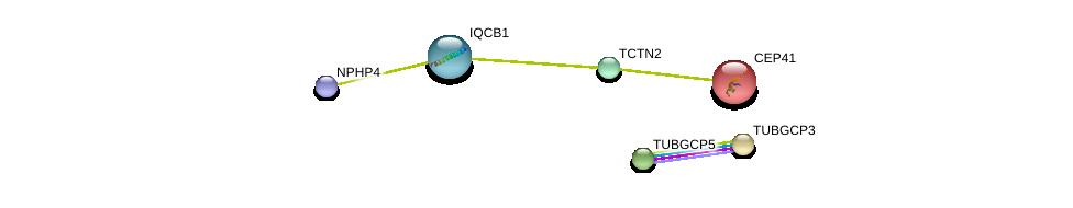 http://string-db.org/version_10/api/image/networkList?limit=0&targetmode=proteins&caller_identity=gene_cards&network_flavor=evidence&identifiers=9606.ENSP00000223208%0d%0a9606.ENSP00000261965%0d%0a9606.ENSP00000367398%0d%0a9606.ENSP00000283645%0d%0a9606.ENSP00000304941%0d%0a9606.ENSP00000311505%0d%0a