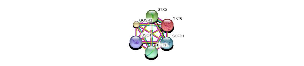 http://string-db.org/version_10/api/image/networkList?limit=0&targetmode=proteins&caller_identity=gene_cards&network_flavor=evidence&identifiers=9606.ENSP00000223369%0d%0a9606.ENSP00000294179%0d%0a9606.ENSP00000225724%0d%0a9606.ENSP00000440586%0d%0a9606.ENSP00000372210%0d%0a9606.ENSP00000390783%0d%0a