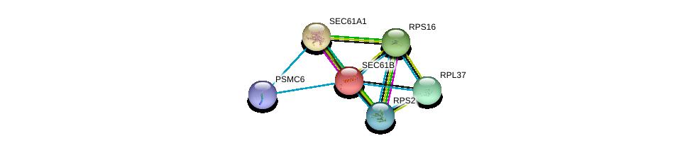 http://string-db.org/version_10/api/image/networkList?limit=0&targetmode=proteins&caller_identity=gene_cards&network_flavor=evidence&identifiers=9606.ENSP00000223641%0d%0a9606.ENSP00000243253%0d%0a9606.ENSP00000251453%0d%0a9606.ENSP00000274242%0d%0a9606.ENSP00000341885%0d%0a9606.ENSP00000401802%0d%0a