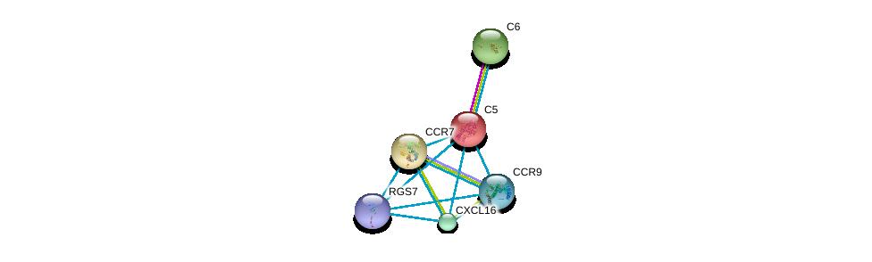 http://string-db.org/version_10/api/image/networkList?limit=0&targetmode=proteins&caller_identity=gene_cards&network_flavor=evidence&identifiers=9606.ENSP00000223642%0d%0a9606.ENSP00000263413%0d%0a9606.ENSP00000350256%0d%0a9606.ENSP00000293778%0d%0a9606.ENSP00000246657%0d%0a9606.ENSP00000355523%0d%0a