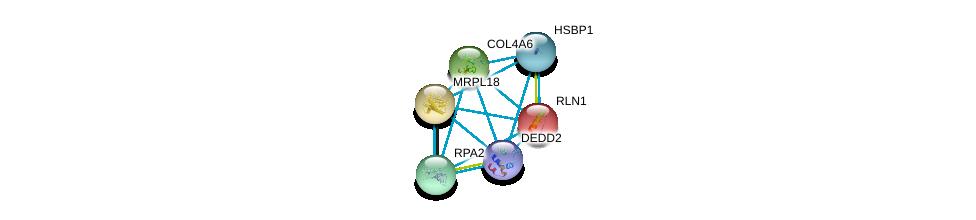 http://string-db.org/version_10/api/image/networkList?limit=0&targetmode=proteins&caller_identity=gene_cards&network_flavor=evidence&identifiers=9606.ENSP00000223862%0d%0a9606.ENSP00000470082%0d%0a9606.ENSP00000392896%0d%0a9606.ENSP00000363021%0d%0a9606.ENSP00000361290%0d%0a9606.ENSP00000356001%0d%0a