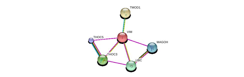 http://string-db.org/version_10/api/image/networkList?limit=0&targetmode=proteins&caller_identity=gene_cards&network_flavor=evidence&identifiers=9606.ENSP00000224237%0d%0a9606.ENSP00000360525%0d%0a9606.ENSP00000344818%0d%0a9606.ENSP00000380969%0d%0a9606.ENSP00000265097%0d%0a9606.ENSP00000259365%0d%0a