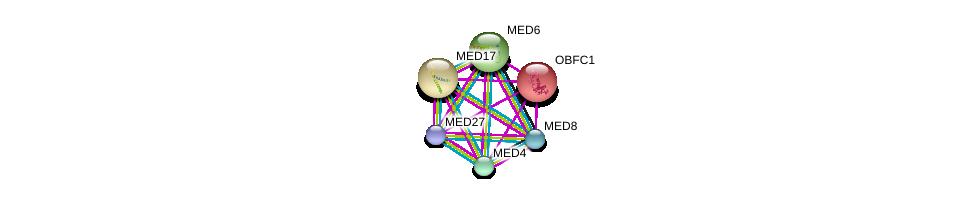 http://string-db.org/version_10/api/image/networkList?limit=0&targetmode=proteins&caller_identity=gene_cards&network_flavor=evidence&identifiers=9606.ENSP00000224950%0d%0a9606.ENSP00000251871%0d%0a9606.ENSP00000256379%0d%0a9606.ENSP00000258648%0d%0a9606.ENSP00000290663%0d%0a9606.ENSP00000292035%0d%0a