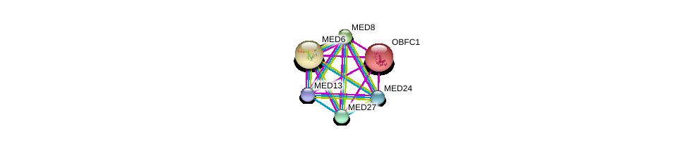 http://string-db.org/version_10/api/image/networkList?limit=0&targetmode=proteins&caller_identity=gene_cards&network_flavor=evidence&identifiers=9606.ENSP00000224950%0d%0a9606.ENSP00000380888%0d%0a9606.ENSP00000256379%0d%0a9606.ENSP00000377686%0d%0a9606.ENSP00000292035%0d%0a9606.ENSP00000290663%0d%0a