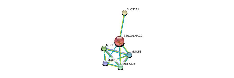 http://string-db.org/version_10/api/image/networkList?limit=0&targetmode=proteins&caller_identity=gene_cards&network_flavor=evidence&identifiers=9606.ENSP00000225276%0d%0a9606.ENSP00000358565%0d%0a9606.ENSP00000406861%0d%0a9606.ENSP00000436812%0d%0a9606.ENSP00000441929%0d%0a9606.ENSP00000435591%0d%0a