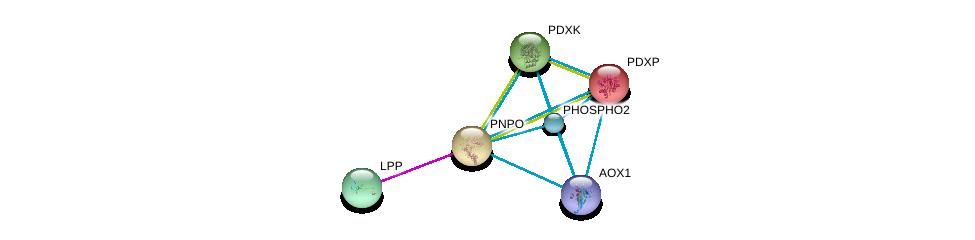 http://string-db.org/version_10/api/image/networkList?limit=0&targetmode=proteins&caller_identity=gene_cards&network_flavor=evidence&identifiers=9606.ENSP00000225573%0d%0a9606.ENSP00000363832%0d%0a9606.ENSP00000215904%0d%0a9606.ENSP00000352782%0d%0a9606.ENSP00000291565%0d%0a9606.ENSP00000318089%0d%0a