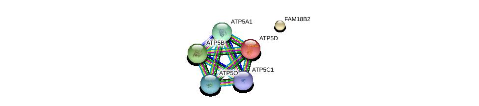 http://string-db.org/version_10/api/image/networkList?limit=0&targetmode=proteins&caller_identity=gene_cards&network_flavor=evidence&identifiers=9606.ENSP00000225576%0d%0a9606.ENSP00000349142%0d%0a9606.ENSP00000282050%0d%0a9606.ENSP00000262030%0d%0a9606.ENSP00000290299%0d%0a9606.ENSP00000215375%0d%0a