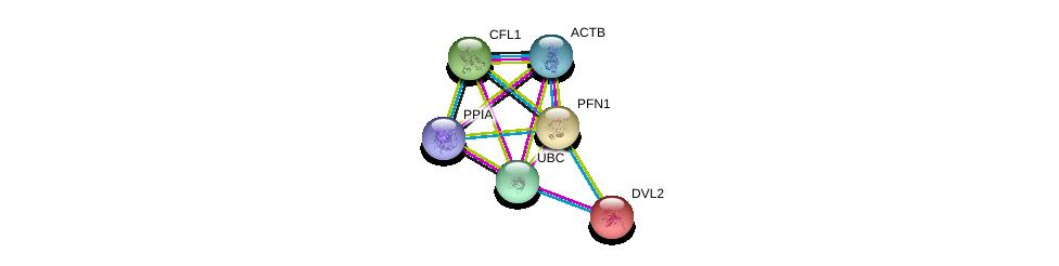 http://string-db.org/version_10/api/image/networkList?limit=0&targetmode=proteins&caller_identity=gene_cards&network_flavor=evidence&identifiers=9606.ENSP00000225655%0d%0a9606.ENSP00000344818%0d%0a9606.ENSP00000349960%0d%0a9606.ENSP00000419425%0d%0a9606.ENSP00000309629%0d%0a9606.ENSP00000005340%0d%0a