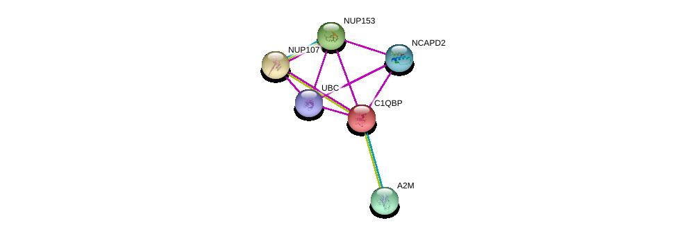 http://string-db.org/version_10/api/image/networkList?limit=0&targetmode=proteins&caller_identity=gene_cards&network_flavor=evidence&identifiers=9606.ENSP00000225698%0d%0a9606.ENSP00000262077%0d%0a9606.ENSP00000325017%0d%0a9606.ENSP00000229179%0d%0a9606.ENSP00000344818%0d%0a9606.ENSP00000323929%0d%0a