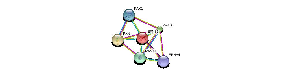 http://string-db.org/version_10/api/image/networkList?limit=0&targetmode=proteins&caller_identity=gene_cards&network_flavor=evidence&identifiers=9606.ENSP00000226091%0d%0a9606.ENSP00000281821%0d%0a9606.ENSP00000228307%0d%0a9606.ENSP00000274376%0d%0a9606.ENSP00000278568%0d%0a9606.ENSP00000246792%0d%0a
