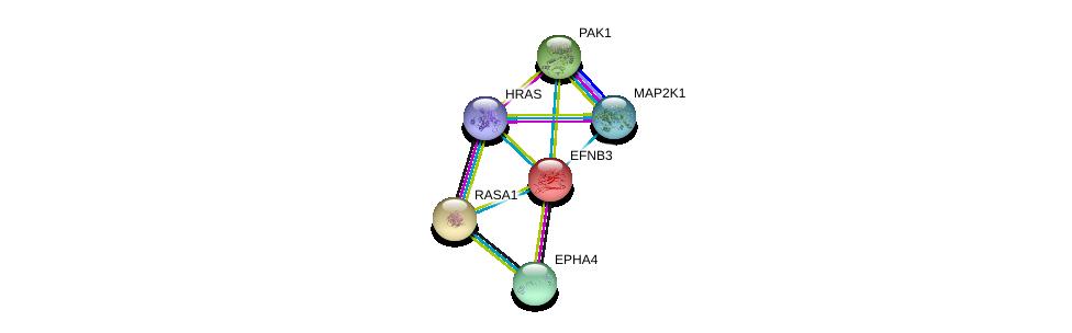 http://string-db.org/version_10/api/image/networkList?limit=0&targetmode=proteins&caller_identity=gene_cards&network_flavor=evidence&identifiers=9606.ENSP00000226091%0d%0a9606.ENSP00000281821%0d%0a9606.ENSP00000274376%0d%0a9606.ENSP00000278568%0d%0a9606.ENSP00000302486%0d%0a9606.ENSP00000309845%0d%0a