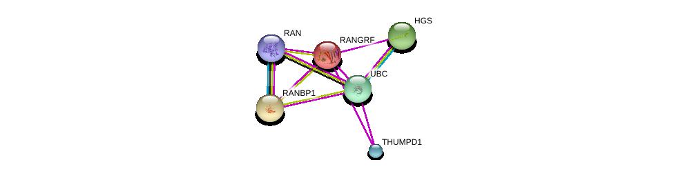 http://string-db.org/version_10/api/image/networkList?limit=0&targetmode=proteins&caller_identity=gene_cards&network_flavor=evidence&identifiers=9606.ENSP00000226105%0d%0a9606.ENSP00000376176%0d%0a9606.ENSP00000327583%0d%0a9606.ENSP00000370741%0d%0a9606.ENSP00000331201%0d%0a9606.ENSP00000344818%0d%0a