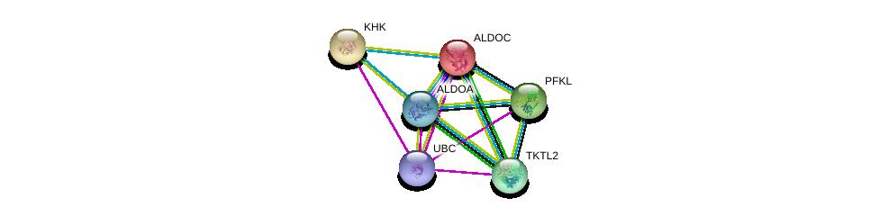 http://string-db.org/version_10/api/image/networkList?limit=0&targetmode=proteins&caller_identity=gene_cards&network_flavor=evidence&identifiers=9606.ENSP00000226253%0d%0a9606.ENSP00000344818%0d%0a9606.ENSP00000336927%0d%0a9606.ENSP00000260598%0d%0a9606.ENSP00000269848%0d%0a9606.ENSP00000280605%0d%0a