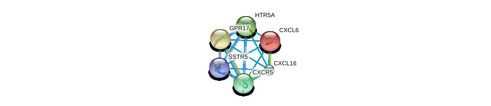 http://string-db.org/version_10/api/image/networkList?limit=0&targetmode=proteins&caller_identity=gene_cards&network_flavor=evidence&identifiers=9606.ENSP00000226317%0d%0a9606.ENSP00000293778%0d%0a9606.ENSP00000293897%0d%0a9606.ENSP00000292174%0d%0a9606.ENSP00000287907%0d%0a9606.ENSP00000272644%0d%0a