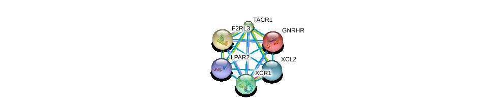http://string-db.org/version_10/api/image/networkList?limit=0&targetmode=proteins&caller_identity=gene_cards&network_flavor=evidence&identifiers=9606.ENSP00000226413%0d%0a9606.ENSP00000384665%0d%0a9606.ENSP00000303522%0d%0a9606.ENSP00000356793%0d%0a9606.ENSP00000310405%0d%0a9606.ENSP00000248076%0d%0a