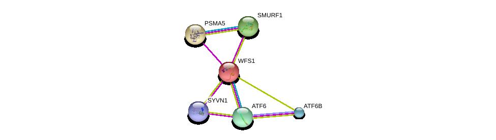 http://string-db.org/version_10/api/image/networkList?limit=0&targetmode=proteins&caller_identity=gene_cards&network_flavor=evidence&identifiers=9606.ENSP00000226760%0d%0a9606.ENSP00000364349%0d%0a9606.ENSP00000354621%0d%0a9606.ENSP00000356919%0d%0a9606.ENSP00000271308%0d%0a9606.ENSP00000366395%0d%0a