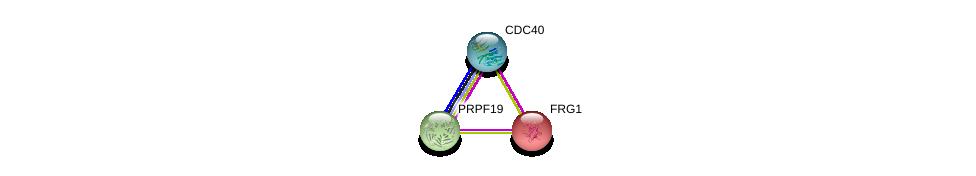 http://string-db.org/version_10/api/image/networkList?limit=0&targetmode=proteins&caller_identity=gene_cards&network_flavor=evidence&identifiers=9606.ENSP00000226798%0d%0a9606.ENSP00000227524%0d%0a9606.ENSP00000304370%0d%0a
