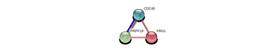 http://string-db.org/version_10/api/image/networkList?limit=0&targetmode=proteins&caller_identity=gene_cards&network_flavor=evidence&identifiers=9606.ENSP00000226798%0d%0a9606.ENSP00000304370%0d%0a9606.ENSP00000227524%0d%0a