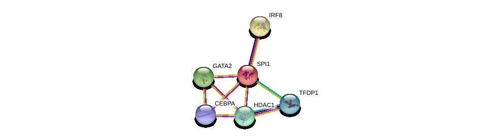 http://string-db.org/version_10/api/image/networkList?limit=0&targetmode=proteins&caller_identity=gene_cards&network_flavor=evidence&identifiers=9606.ENSP00000227163%0d%0a9606.ENSP00000268638%0d%0a9606.ENSP00000345681%0d%0a9606.ENSP00000362649%0d%0a9606.ENSP00000427514%0d%0a9606.ENSP00000364519%0d%0a