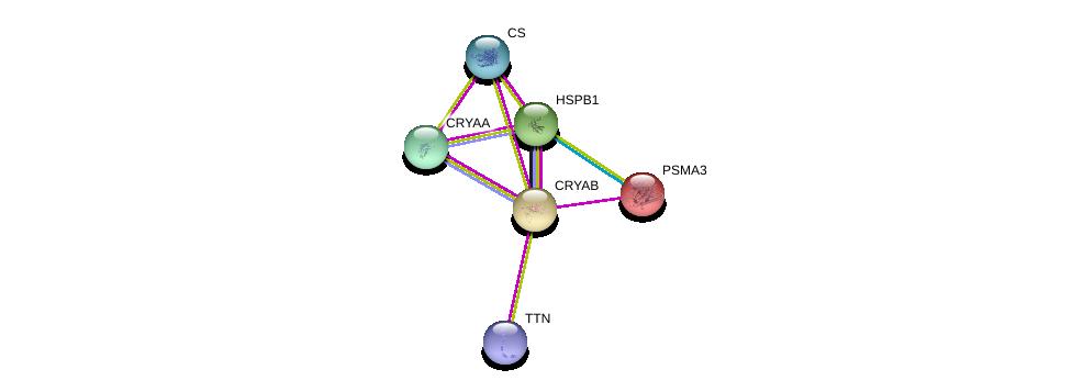 http://string-db.org/version_10/api/image/networkList?limit=0&targetmode=proteins&caller_identity=gene_cards&network_flavor=evidence&identifiers=9606.ENSP00000227251%0d%0a9606.ENSP00000291554%0d%0a9606.ENSP00000248553%0d%0a9606.ENSP00000216455%0d%0a9606.ENSP00000343764%0d%0a9606.ENSP00000342056%0d%0a