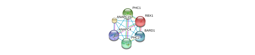 http://string-db.org/version_10/api/image/networkList?limit=0&targetmode=proteins&caller_identity=gene_cards&network_flavor=evidence&identifiers=9606.ENSP00000227618%0d%0a9606.ENSP00000318775%0d%0a9606.ENSP00000216225%0d%0a9606.ENSP00000251757%0d%0a9606.ENSP00000257118%0d%0a9606.ENSP00000260947%0d%0a