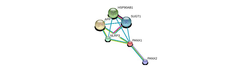 http://string-db.org/version_10/api/image/networkList?limit=0&targetmode=proteins&caller_identity=gene_cards&network_flavor=evidence&identifiers=9606.ENSP00000227638%0d%0a9606.ENSP00000325875%0d%0a9606.ENSP00000337383%0d%0a9606.ENSP00000367208%0d%0a9606.ENSP00000379183%0d%0a9606.ENSP00000284981%0d%0a