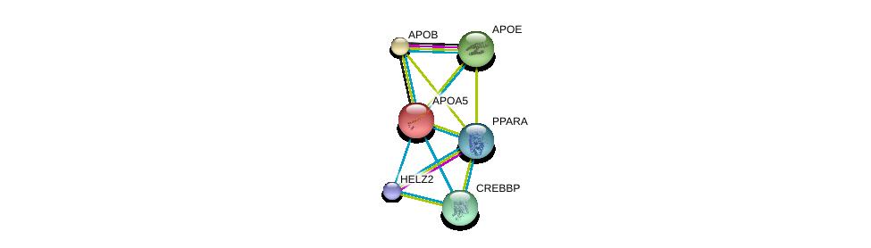 http://string-db.org/version_10/api/image/networkList?limit=0&targetmode=proteins&caller_identity=gene_cards&network_flavor=evidence&identifiers=9606.ENSP00000227665%0d%0a9606.ENSP00000417401%0d%0a9606.ENSP00000233242%0d%0a9606.ENSP00000252486%0d%0a9606.ENSP00000262735%0d%0a9606.ENSP00000262367%0d%0a