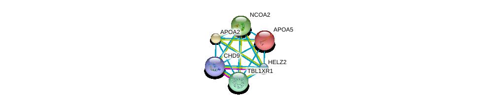 http://string-db.org/version_10/api/image/networkList?limit=0&targetmode=proteins&caller_identity=gene_cards&network_flavor=evidence&identifiers=9606.ENSP00000227665%0d%0a9606.ENSP00000455307%0d%0a9606.ENSP00000417401%0d%0a9606.ENSP00000405574%0d%0a9606.ENSP00000399968%0d%0a9606.ENSP00000356969%0d%0a