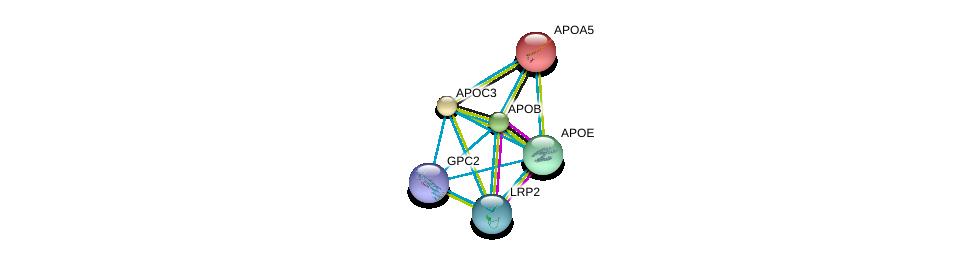 http://string-db.org/version_10/api/image/networkList?limit=0&targetmode=proteins&caller_identity=gene_cards&network_flavor=evidence&identifiers=9606.ENSP00000227667%0d%0a9606.ENSP00000227665%0d%0a9606.ENSP00000233242%0d%0a9606.ENSP00000252486%0d%0a9606.ENSP00000263816%0d%0a9606.ENSP00000292377%0d%0a