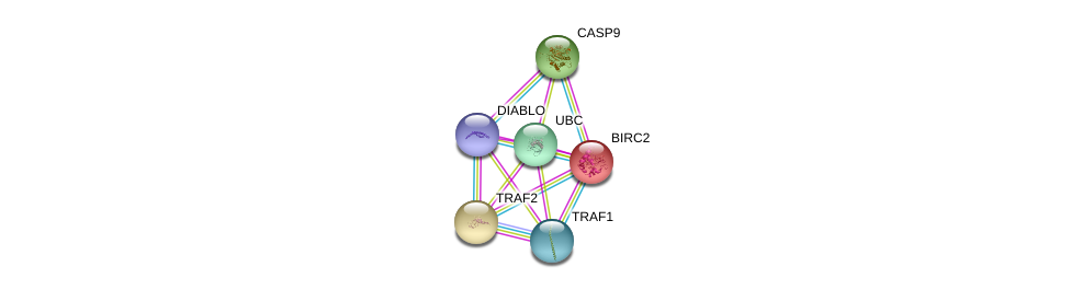 http://string-db.org/version_10/api/image/networkList?limit=0&targetmode=proteins&caller_identity=gene_cards&network_flavor=evidence&identifiers=9606.ENSP00000227758%0d%0a9606.ENSP00000247668%0d%0a9606.ENSP00000362994%0d%0a9606.ENSP00000398495%0d%0a9606.ENSP00000344818%0d%0a9606.ENSP00000330237%0d%0a