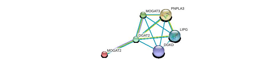 http://string-db.org/version_10/api/image/networkList?limit=0&targetmode=proteins&caller_identity=gene_cards&network_flavor=evidence&identifiers=9606.ENSP00000228027%0d%0a9606.ENSP00000198801%0d%0a9606.ENSP00000216180%0d%0a9606.ENSP00000223114%0d%0a9606.ENSP00000261292%0d%0a9606.ENSP00000264057%0d%0a