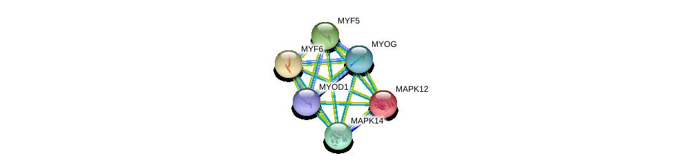 http://string-db.org/version_10/api/image/networkList?limit=0&targetmode=proteins&caller_identity=gene_cards&network_flavor=evidence&identifiers=9606.ENSP00000228641%0d%0a9606.ENSP00000215659%0d%0a9606.ENSP00000228644%0d%0a9606.ENSP00000229794%0d%0a9606.ENSP00000241651%0d%0a9606.ENSP00000250003%0d%0a