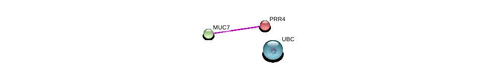 http://string-db.org/version_10/api/image/networkList?limit=0&targetmode=proteins&caller_identity=gene_cards&network_flavor=evidence&identifiers=9606.ENSP00000228811%0d%0a9606.ENSP00000302021%0d%0a9606.ENSP00000344818%0d%0a