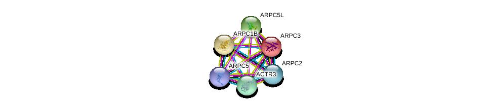 http://string-db.org/version_10/api/image/networkList?limit=0&targetmode=proteins&caller_identity=gene_cards&network_flavor=evidence&identifiers=9606.ENSP00000228825%0d%0a9606.ENSP00000352918%0d%0a9606.ENSP00000252725%0d%0a9606.ENSP00000259477%0d%0a9606.ENSP00000263238%0d%0a9606.ENSP00000295685%0d%0a