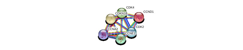 http://string-db.org/version_10/api/image/networkList?limit=0&targetmode=proteins&caller_identity=gene_cards&network_flavor=evidence&identifiers=9606.ENSP00000228872%0d%0a9606.ENSP00000227507%0d%0a9606.ENSP00000257904%0d%0a9606.ENSP00000262643%0d%0a9606.ENSP00000266970%0d%0a9606.ENSP00000274026%0d%0a
