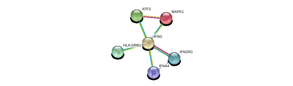 http://string-db.org/version_10/api/image/networkList?limit=0&targetmode=proteins&caller_identity=gene_cards&network_flavor=evidence&identifiers=9606.ENSP00000229135%0d%0a9606.ENSP00000356713%0d%0a9606.ENSP00000215832%0d%0a9606.ENSP00000412897%0d%0a9606.ENSP00000353099%0d%0a9606.ENSP00000344352%0d%0a