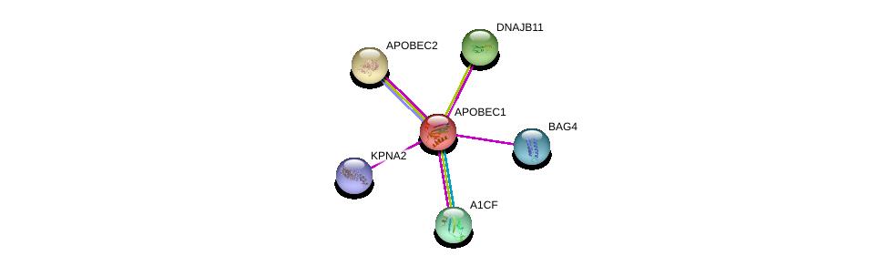 http://string-db.org/version_10/api/image/networkList?limit=0&targetmode=proteins&caller_identity=gene_cards&network_flavor=evidence&identifiers=9606.ENSP00000229304%0d%0a9606.ENSP00000282641%0d%0a9606.ENSP00000244669%0d%0a9606.ENSP00000265028%0d%0a9606.ENSP00000287322%0d%0a9606.ENSP00000332455%0d%0a