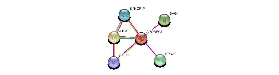 http://string-db.org/version_10/api/image/networkList?limit=0&targetmode=proteins&caller_identity=gene_cards&network_flavor=evidence&identifiers=9606.ENSP00000229304%0d%0a9606.ENSP00000282641%0d%0a9606.ENSP00000287322%0d%0a9606.ENSP00000332455%0d%0a9606.ENSP00000358635%0d%0a9606.ENSP00000389951%0d%0a