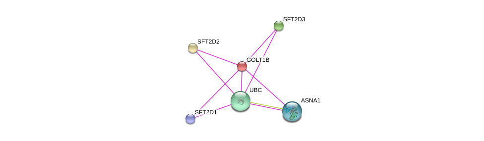 http://string-db.org/version_10/api/image/networkList?limit=0&targetmode=proteins&caller_identity=gene_cards&network_flavor=evidence&identifiers=9606.ENSP00000229314%0d%0a9606.ENSP00000310803%0d%0a9606.ENSP00000344818%0d%0a9606.ENSP00000349887%0d%0a9606.ENSP00000271375%0d%0a9606.ENSP00000354590%0d%0a