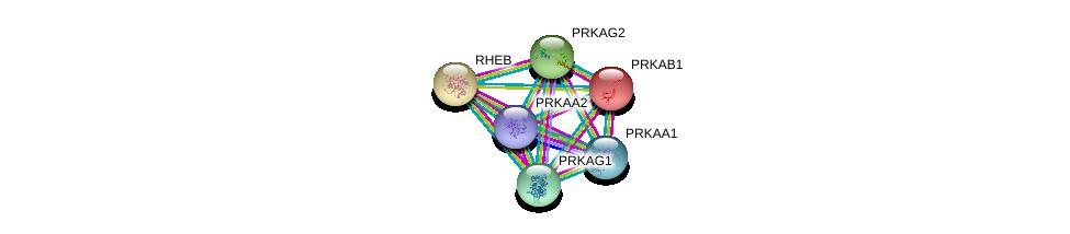 http://string-db.org/version_10/api/image/networkList?limit=0&targetmode=proteins&caller_identity=gene_cards&network_flavor=evidence&identifiers=9606.ENSP00000229328%0d%0a9606.ENSP00000323867%0d%0a9606.ENSP00000346148%0d%0a9606.ENSP00000287878%0d%0a9606.ENSP00000360290%0d%0a9606.ENSP00000262187%0d%0a