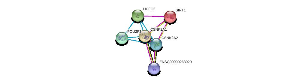 http://string-db.org/version_10/api/image/networkList?limit=0&targetmode=proteins&caller_identity=gene_cards&network_flavor=evidence&identifiers=9606.ENSP00000229330%0d%0a9606.ENSP00000217244%0d%0a9606.ENSP00000262506%0d%0a9606.ENSP00000260264%0d%0a9606.ENSP00000365040%0d%0a9606.ENSP00000212015%0d%0a
