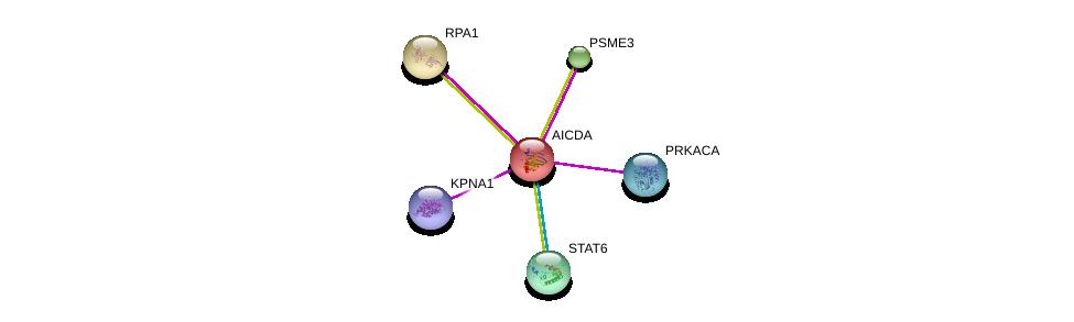 http://string-db.org/version_10/api/image/networkList?limit=0&targetmode=proteins&caller_identity=gene_cards&network_flavor=evidence&identifiers=9606.ENSP00000229335%0d%0a9606.ENSP00000300134%0d%0a9606.ENSP00000343701%0d%0a9606.ENSP00000254719%0d%0a9606.ENSP00000293362%0d%0a9606.ENSP00000309591%0d%0a