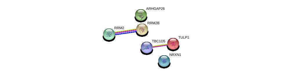 http://string-db.org/version_10/api/image/networkList?limit=0&targetmode=proteins&caller_identity=gene_cards&network_flavor=evidence&identifiers=9606.ENSP00000229771%0d%0a9606.ENSP00000353770%0d%0a9606.ENSP00000251810%0d%0a9606.ENSP00000274498%0d%0a9606.ENSP00000385142%0d%0a9606.ENSP00000402935%0d%0a