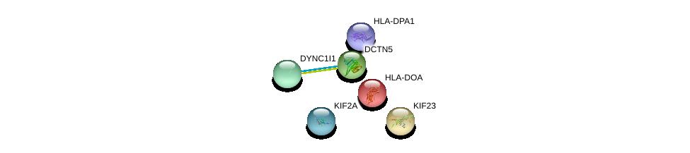 http://string-db.org/version_10/api/image/networkList?limit=0&targetmode=proteins&caller_identity=gene_cards&network_flavor=evidence&identifiers=9606.ENSP00000229829%0d%0a9606.ENSP00000320130%0d%0a9606.ENSP00000385000%0d%0a9606.ENSP00000300087%0d%0a9606.ENSP00000260363%0d%0a9606.ENSP00000393566%0d%0a