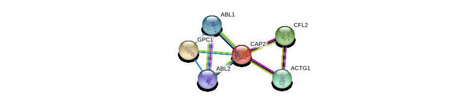 http://string-db.org/version_10/api/image/networkList?limit=0&targetmode=proteins&caller_identity=gene_cards&network_flavor=evidence&identifiers=9606.ENSP00000229922%0d%0a9606.ENSP00000331514%0d%0a9606.ENSP00000298159%0d%0a9606.ENSP00000264039%0d%0a9606.ENSP00000361423%0d%0a9606.ENSP00000427562%0d%0a
